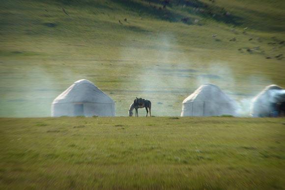 Kirg-2008-130-tri