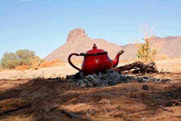 Loin du désert ©Photo Jade Mietton