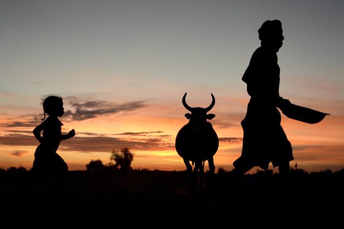 Mauritanie ©Photo Jean Daragnes